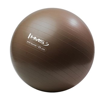 HMS YB02 65CM GYM BALL +POMPKA GRIZZLY
